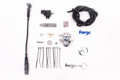 Forge R56 N18 Blow Off Valve Kit